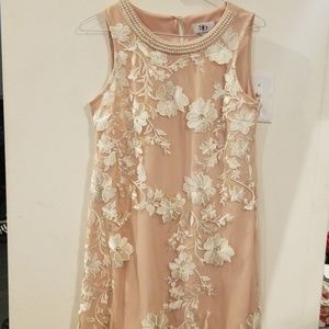 SD collection embroided pearl dress